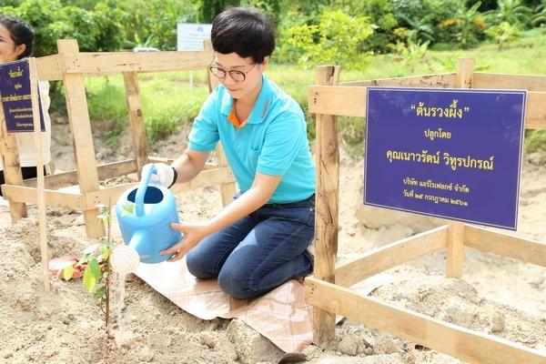 โครงการปลูกป่าเฉลิมพระเกียรติ เนื่องในวันเฉลิมพระชนม์พรรษา / The Forest Rehabilitation Project to commemorate His Majesty the King's Birthday